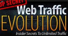 Web Traffic Evolution